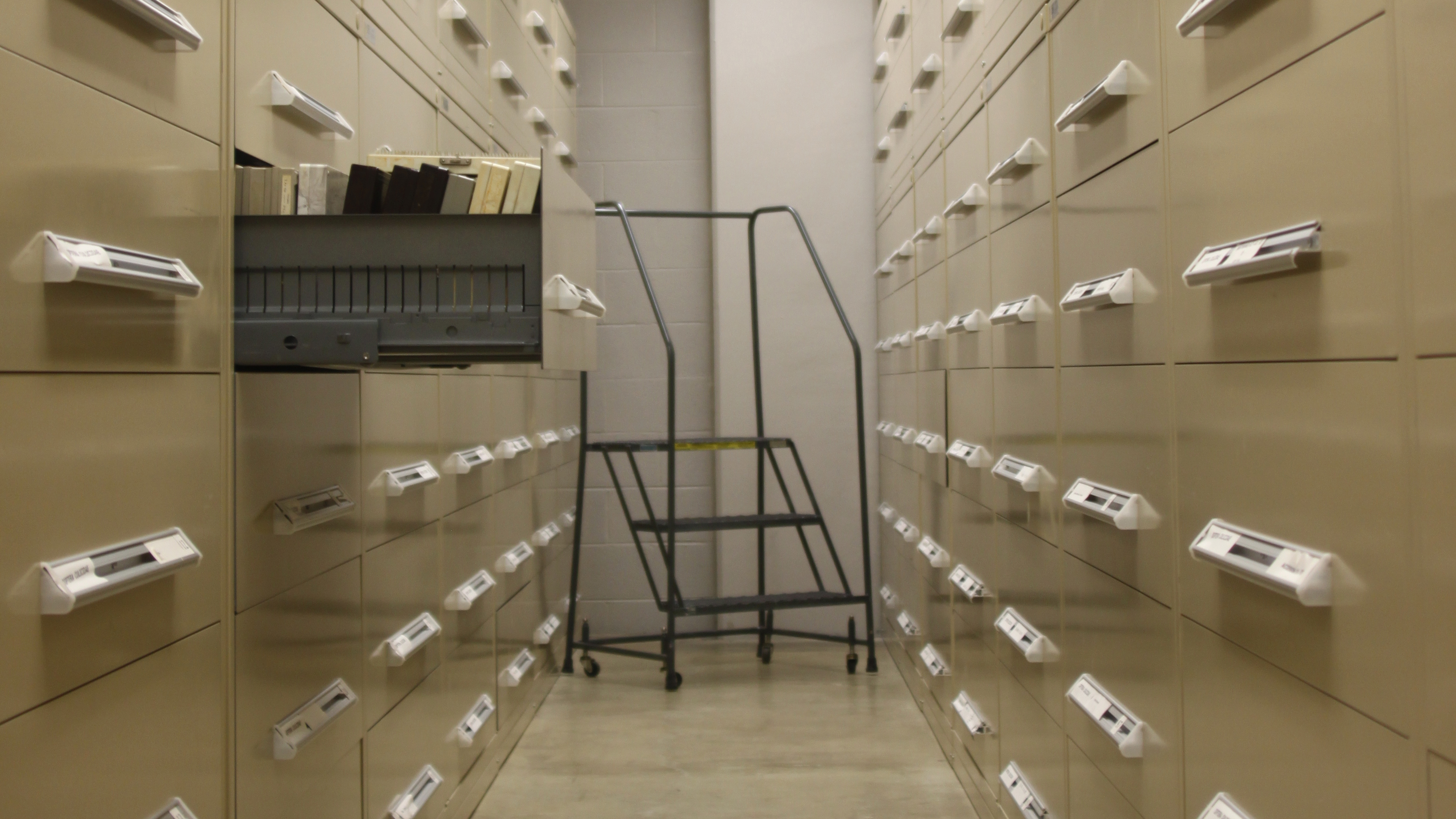 A view of our collections space